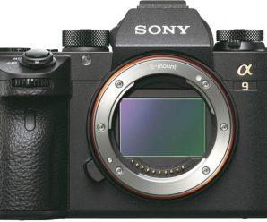 Обновление прошивки Sony a9 добавляет Animal Eye AF, интервальную съемку и другие новшества